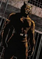 Bronze Tiger to be played by  Michael Jai White